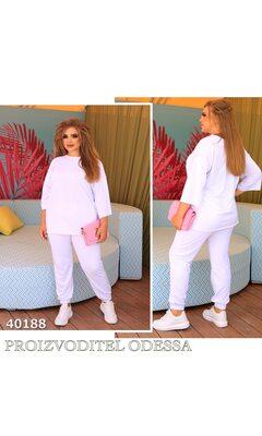 Костюм s-1002 двойка прогулочный штаны на манжете R-40188 белый